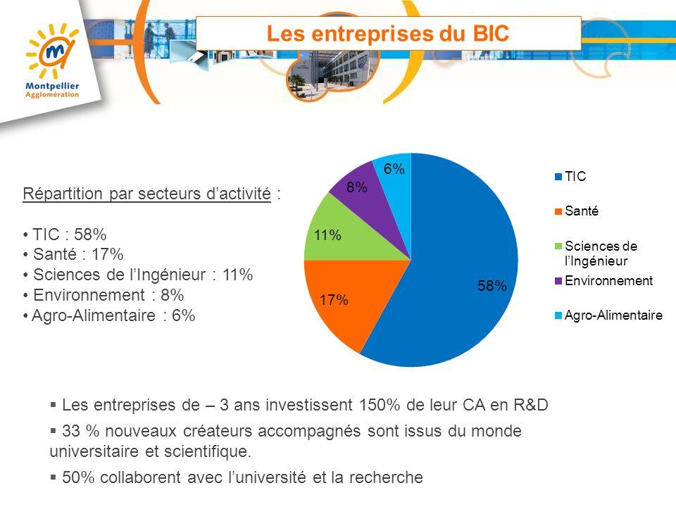Les entreprises du BIC Répartition par secteurs dactivité : TIC : 58% Santé : 17% Sciences de lIngénieur : 11% Environnement : 8% Agro-Alimentaire : 6