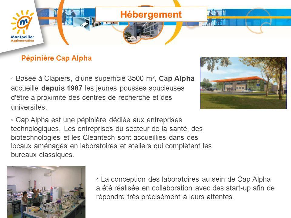 Hébergement Basée à Clapiers, dune superficie 3500 m², Cap Alpha accueille depuis 1987 les jeunes pousses soucieuses d'être à proximité des centres de