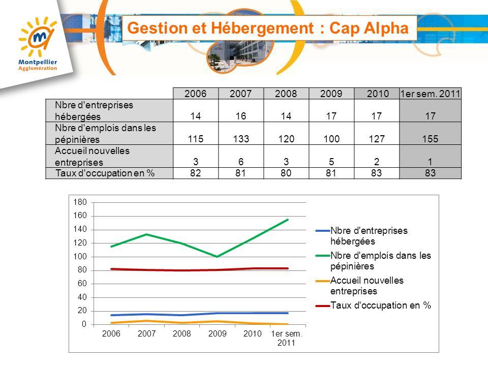 Gestion et Hébergement : Cap Alpha 2006200720082009 20101er sem. 2011 Nbre d'entreprises hébergées14161417 Nbre d'emplois dans les pépinières115133120