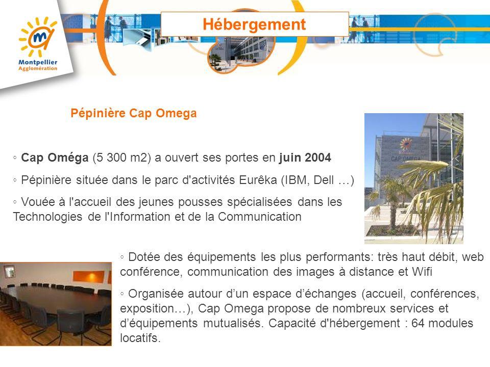Cap Oméga (5 300 m2) a ouvert ses portes en juin 2004 Pépinière située dans le parc d'activités Eurêka (IBM, Dell …) Vouée à l'accueil des jeunes pous