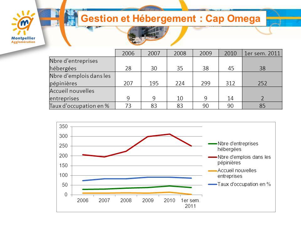 Gestion et Hébergement : Cap Omega 200620072008200920101er sem. 2011 Nbre d'entreprises hébergées28303538 4538 Nbre d'emplois dans les pépinières20719