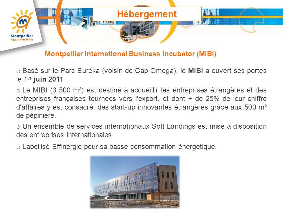 o Basé sur le Parc Eurêka (voisin de Cap Omega), le MIBI a ouvert ses portes le 1 er juin 2011 o Le MIBI (3 500 m²) est destiné à accueillir les entre