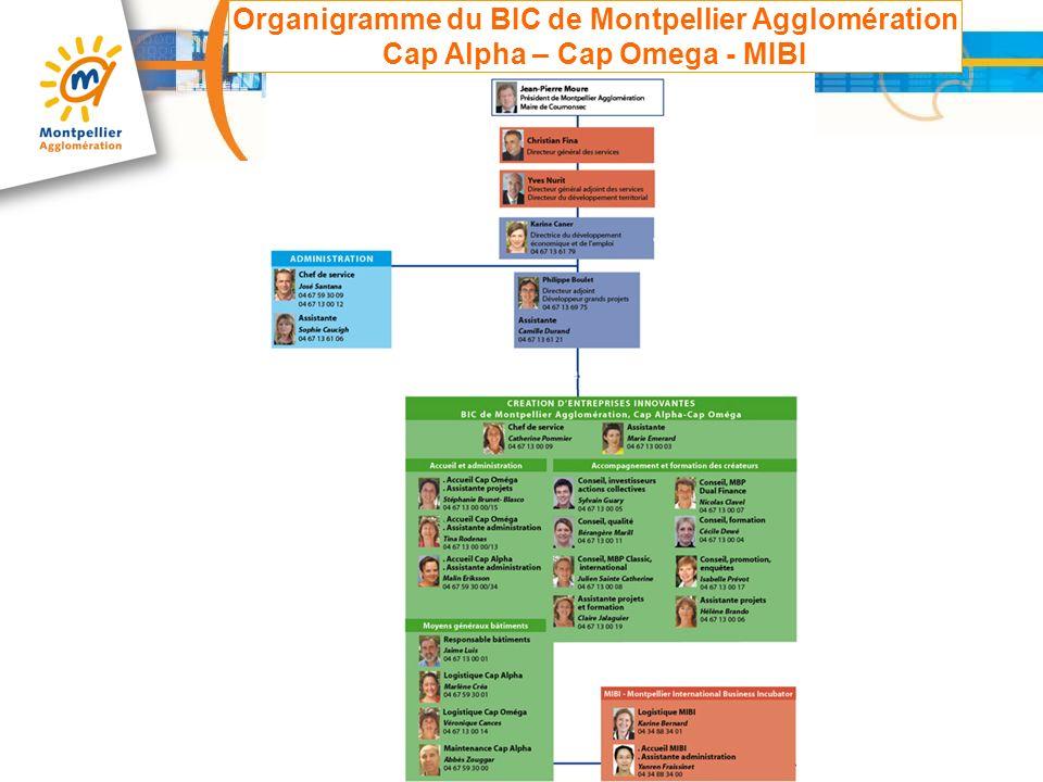 Organigramme du BIC de Montpellier Agglomération Cap Alpha – Cap Omega - MIBI