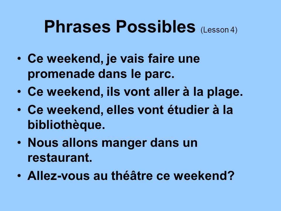 Phrases Possibles (Lesson 4) Ce weekend, je vais faire une promenade dans le parc. Ce weekend, ils vont aller à la plage. Ce weekend, elles vont étudi