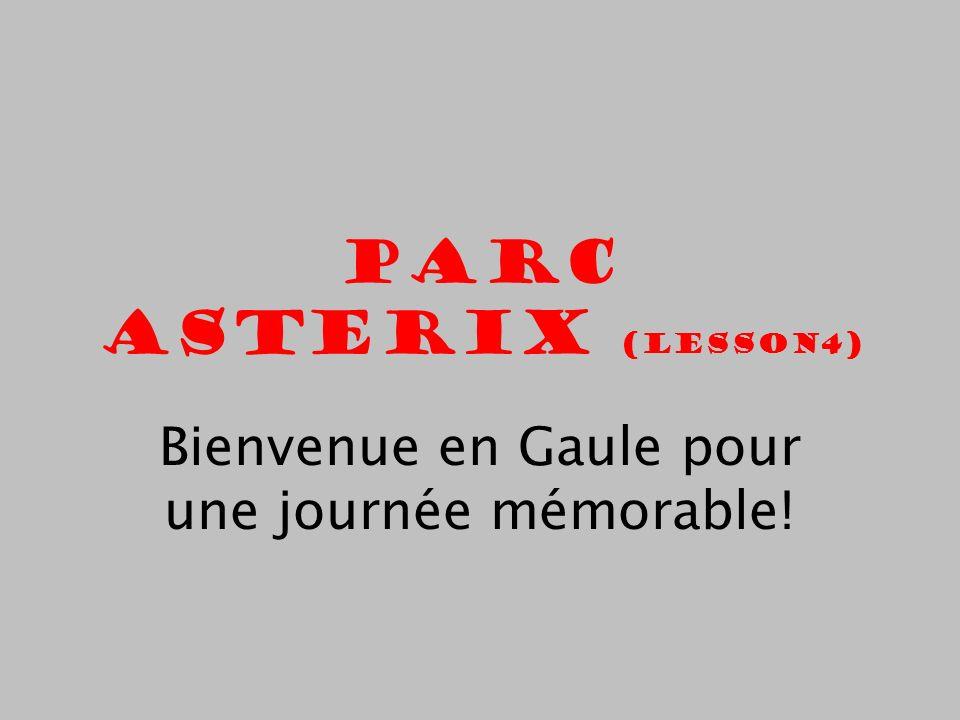 Parc Asterix (Lesson4) Bienvenue en Gaule pour une journée mémorable!