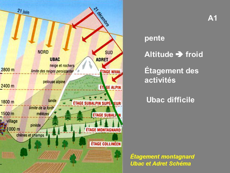A1 pente Altitude froid Étagement des activités Étagement montagnard Ubac et Adret Schéma Ubac difficile