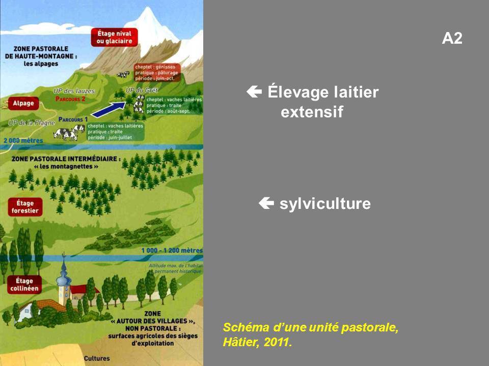 Schéma dune unité pastorale, Hâtier, 2011. A2 sylviculture Élevage laitier extensif