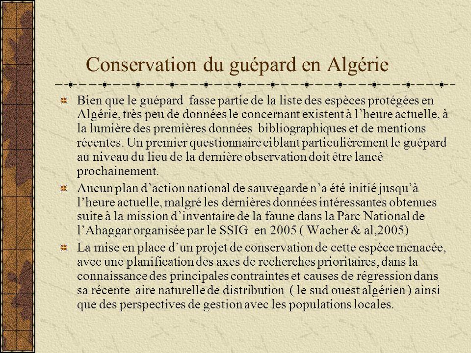 Conservation du guépard en Algérie Bien que le guépard fasse partie de la liste des espèces protégées en Algérie, très peu de données le concernant ex