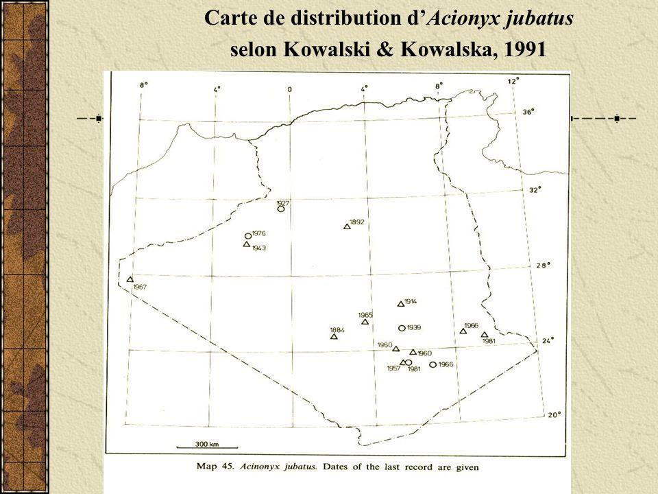 Distribution dAcionyx jubatus au Sud du Maroc selon Cuzin,2003