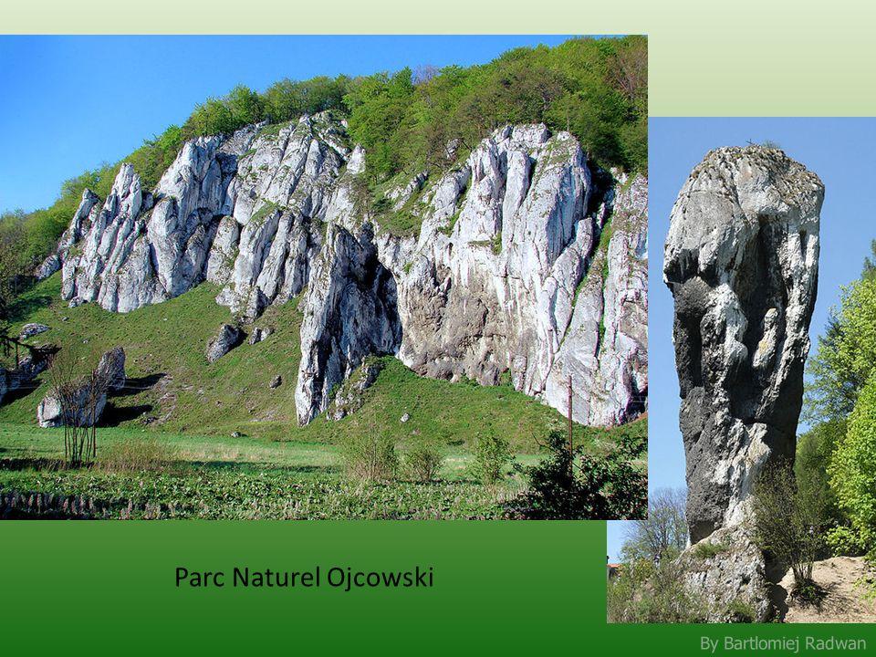 By Bartlomiej Radwan Parc Naturel Ojcowski