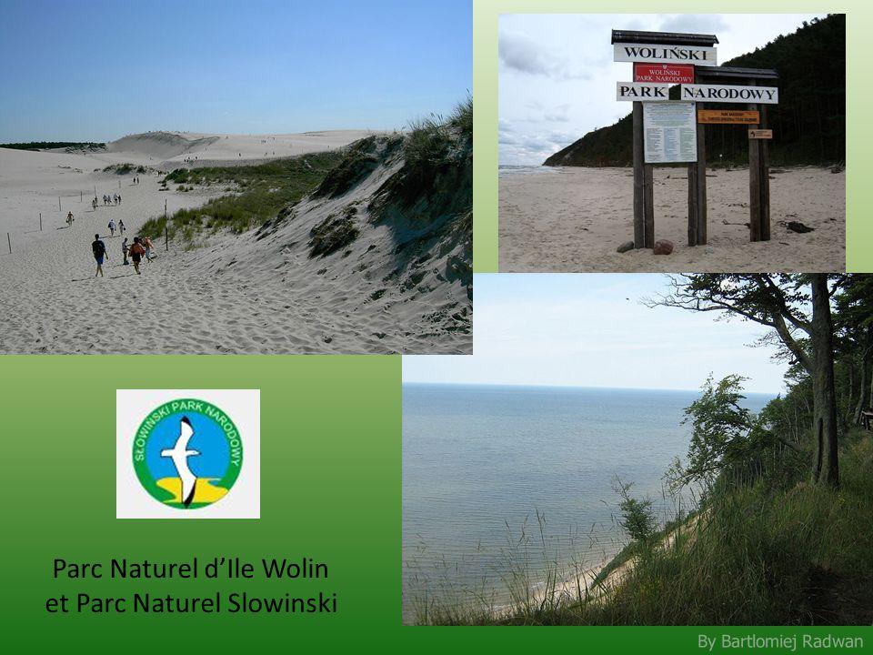 By Bartlomiej Radwan Parc Naturel dIle Wolin et Parc Naturel Slowinski