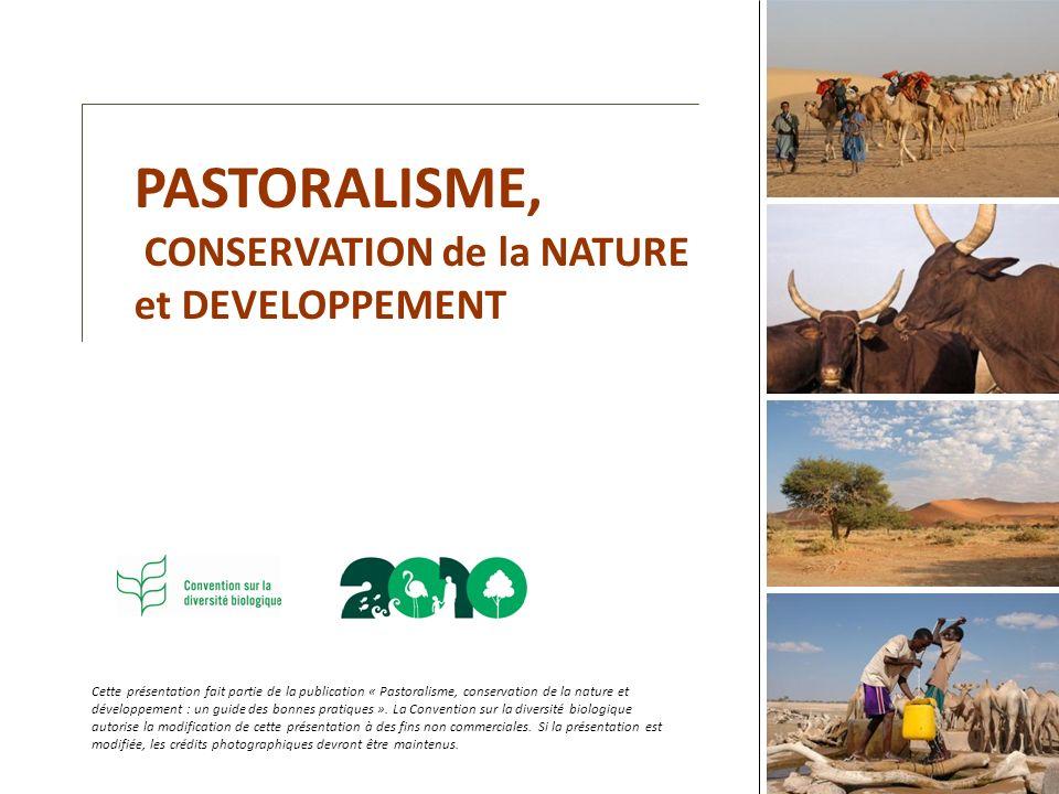 Cette présentation fait partie de la publication « Pastoralisme, conservation de la nature et développement : un guide des bonnes pratiques ». La Conv