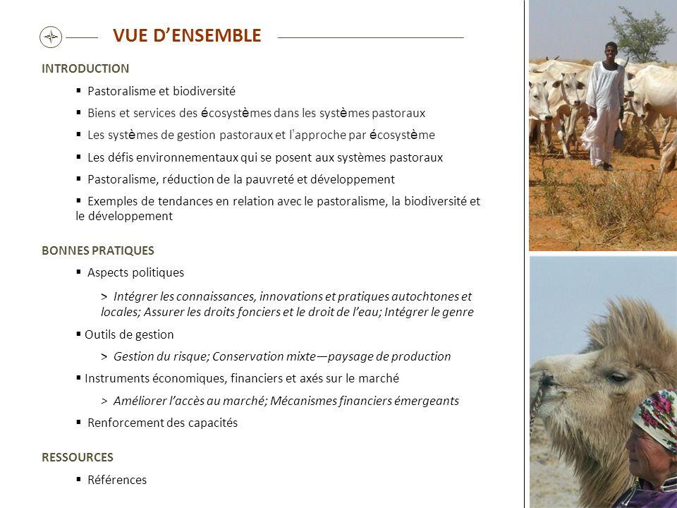 VUE DENSEMBLE INTRODUCTION Pastoralisme et biodiversité Biens et services des é cosyst è mes dans les syst è mes pastoraux Les syst è mes de gestion p