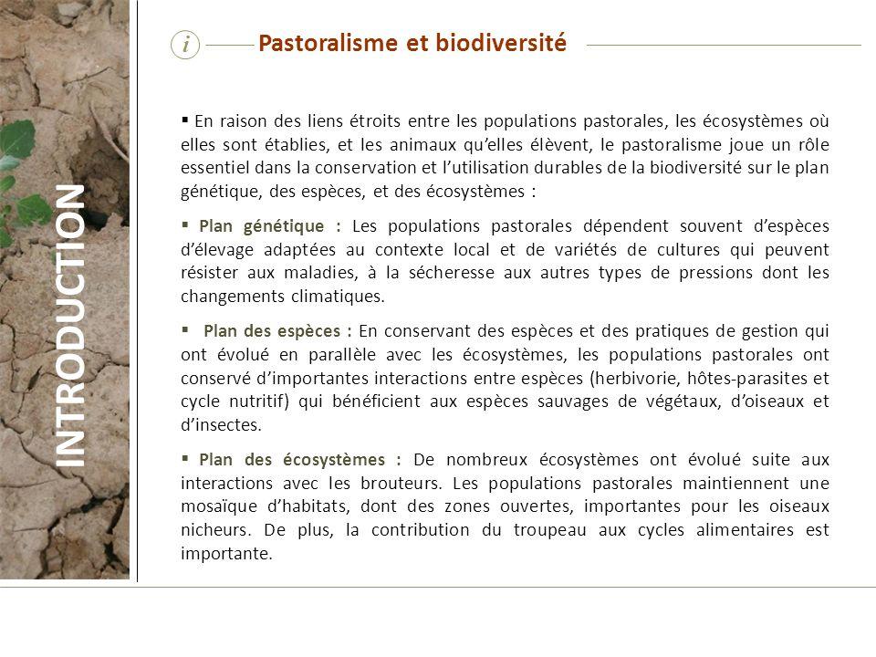 i En raison des liens étroits entre les populations pastorales, les écosystèmes où elles sont établies, et les animaux quelles élèvent, le pastoralism