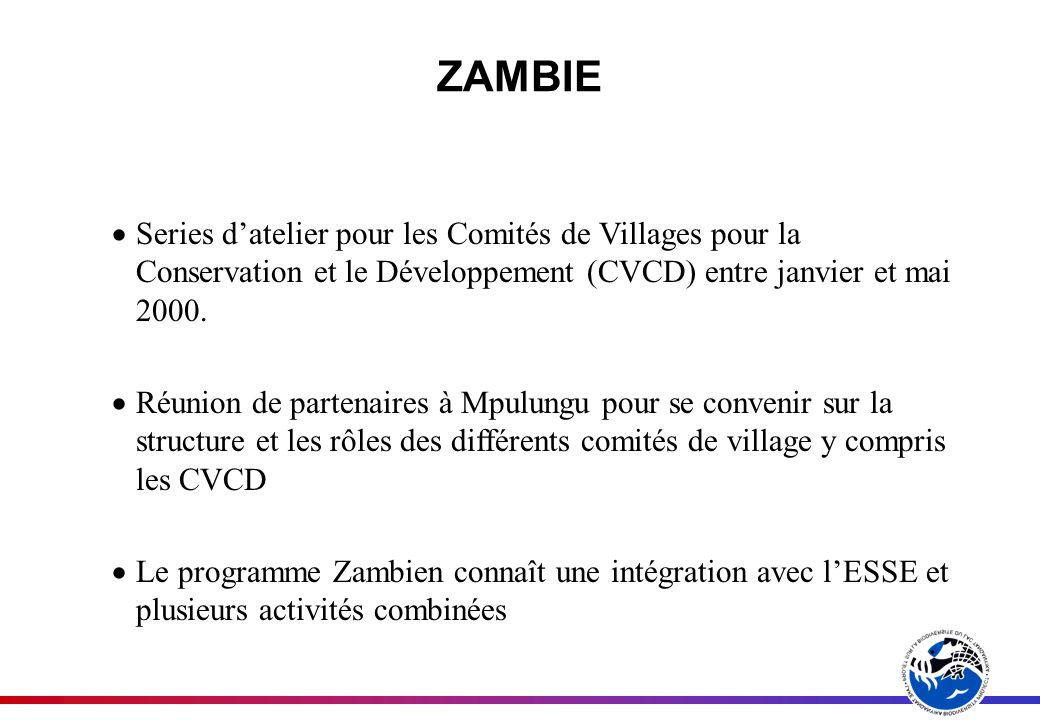ZAMBIE Series datelier pour les Comités de Villages pour la Conservation et le Développement (CVCD) entre janvier et mai 2000.