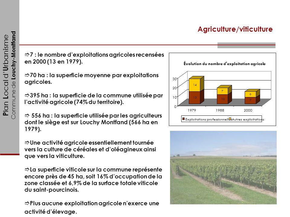P lan L ocal d U rbanisme Commune de Louchy-Montfand Agriculture/viticulture 7 : le nombre dexploitations agricoles recensées en 2000 (13 en 1979). 70