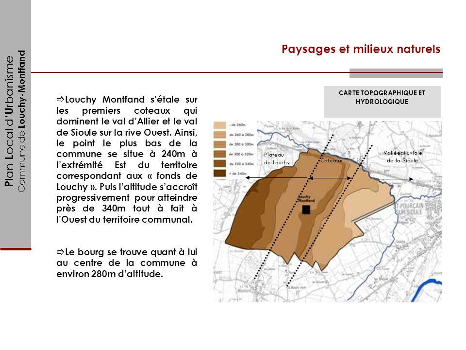 P lan L ocal d U rbanisme Commune de Louchy-Montfand Paysages et milieux naturels Louchy Montfand sétale sur les premiers coteaux qui dominent le val