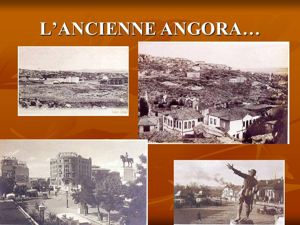 LANCIENNE ANGORA…