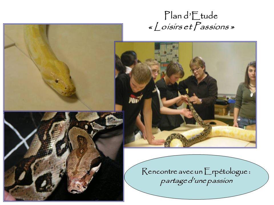 Plan dEtude « Loisirs et Passions » Rencontre avec un Erpétologue : partage dune passion