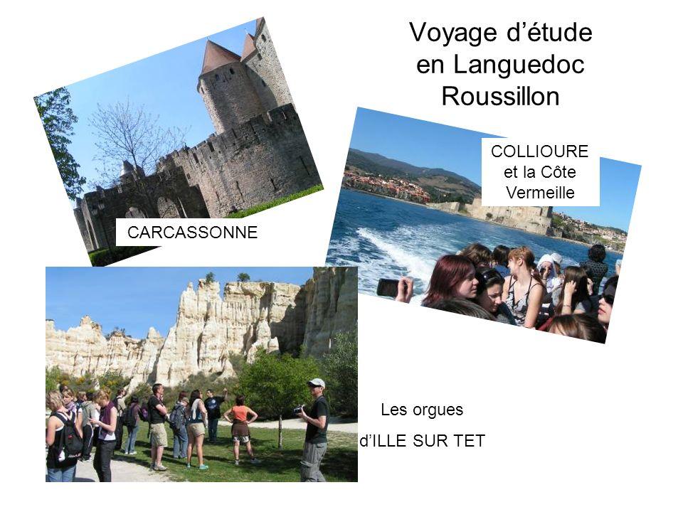 Voyage détude en Languedoc Roussillon CARCASSONNE COLLIOURE et la Côte Vermeille Les orgues dILLE SUR TET