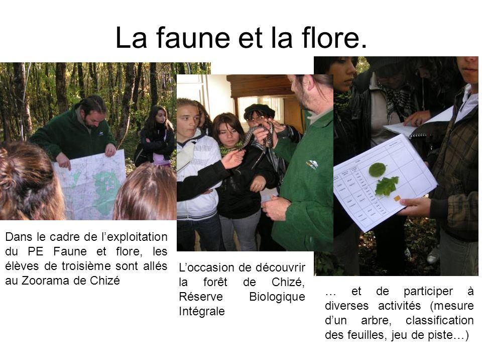 La faune et la flore. Dans le cadre de lexploitation du PE Faune et flore, les élèves de troisième sont allés au Zoorama de Chizé Loccasion de découvr
