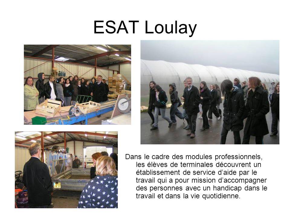 ESAT Loulay Dans le cadre des modules professionnels, les élèves de terminales découvrent un établissement de service daide par le travail qui a pour