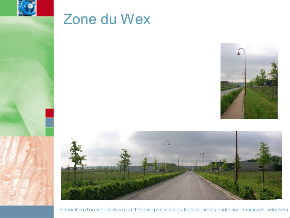 Zone du Wex Elaboration dun schéma type pour lespace public (haies, trottoirs, arbres haute-tige, luminaires, pelouses)