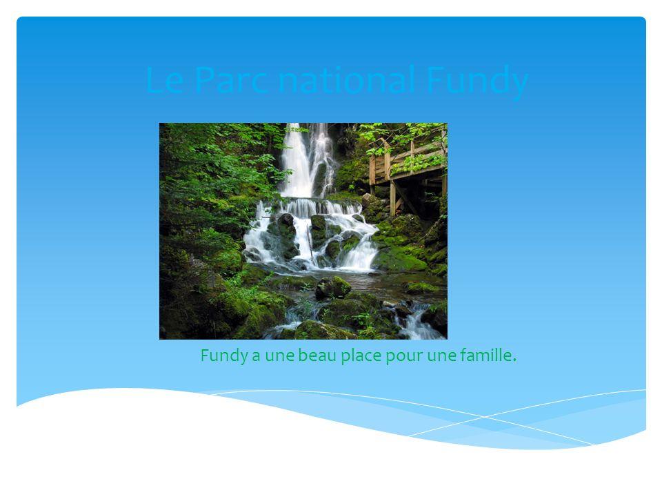 Le parc au Fundy est bonne place pour visite dans Noveau-Brunswick et tu peux prande des belles photos.