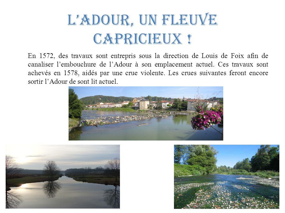 lAdour, un fleuve capricieux .