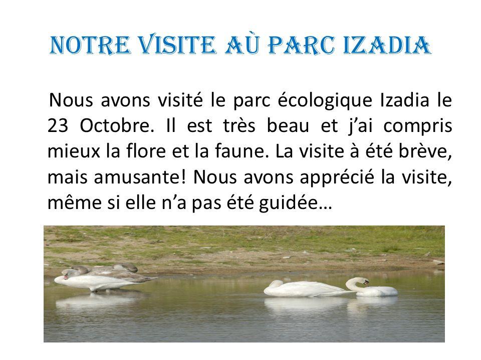 Notre visite aù Parc Izadia Nous avons visité le parc écologique Izadia le 23 Octobre.