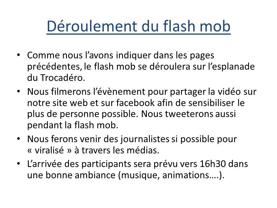 Déroulement du flash mob Comme nous lavons indiquer dans les pages précédentes, le flash mob se déroulera sur lesplanade du Trocadéro.
