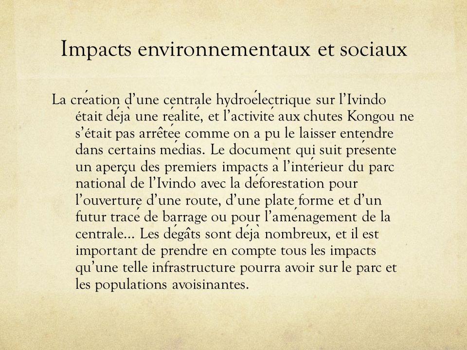 Impacts environnementaux et sociaux La creation dune centrale hydroelectrique sur lIvindo était deja ̀ une realite, et lactivite aux chutes Kongou ne