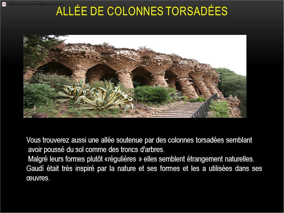 ALLÉE DE COLONNES TORSADÉES Vous trouverez aussi une allée soutenue par des colonnes torsadées semblant avoir poussé du sol comme des troncs d'arbres.