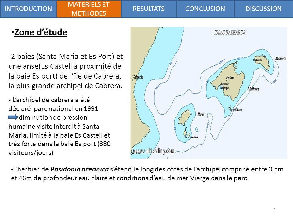 Zone détude -2 baies (Santa Maria et Es Port) et une anse(Es Castell à proximité de la baie Es port) de lîle de Cabrera, la plus grande archipel de Cabrera.