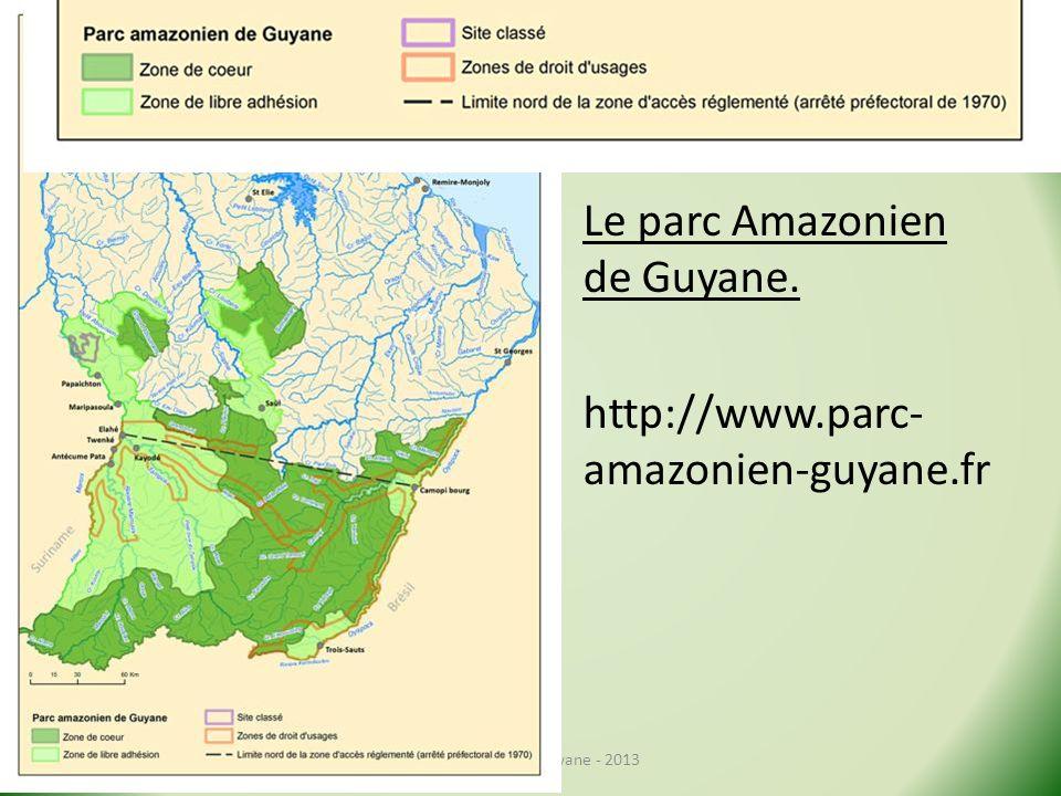 Le parc Amazonien de Guyane. http://www.parc- amazonien-guyane.fr Stage Géo de la Guyane - 2013