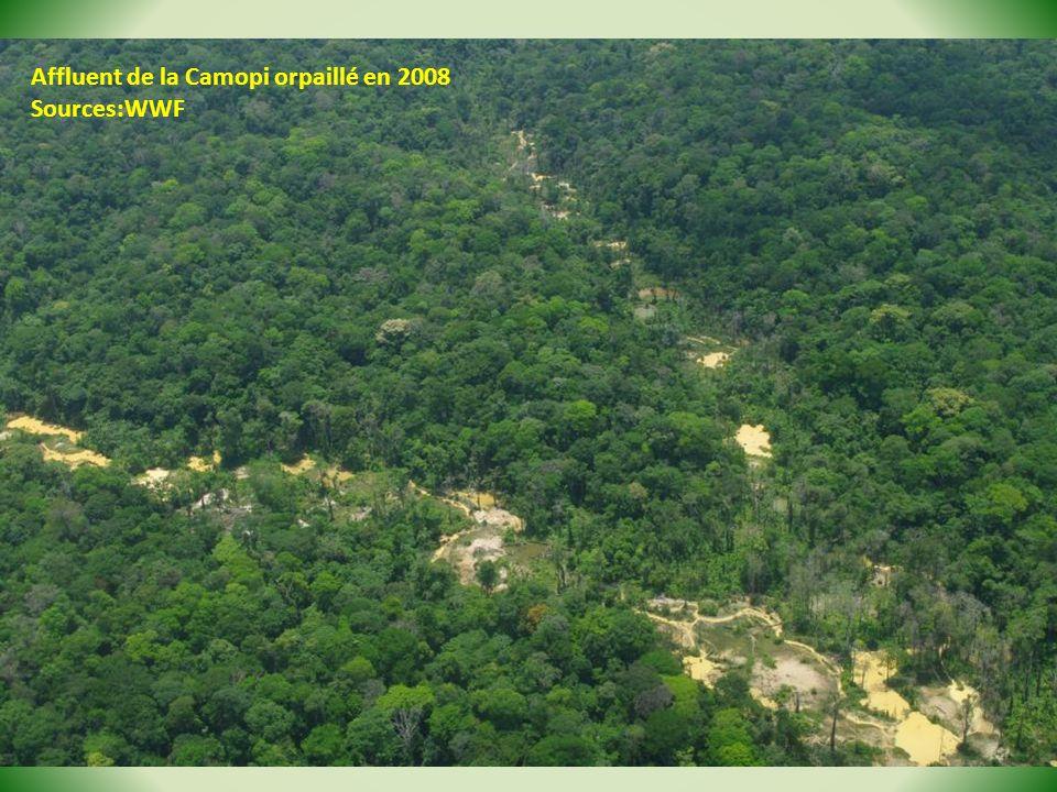 Affluent de la Camopi orpaillé en 2008 Sources:WWF