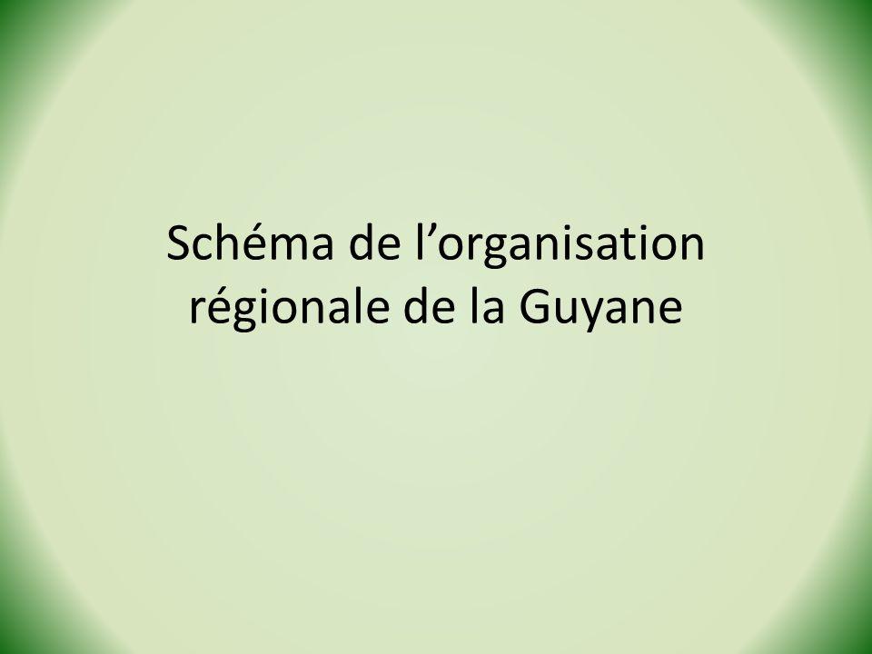 Schéma de lorganisation régionale de la Guyane