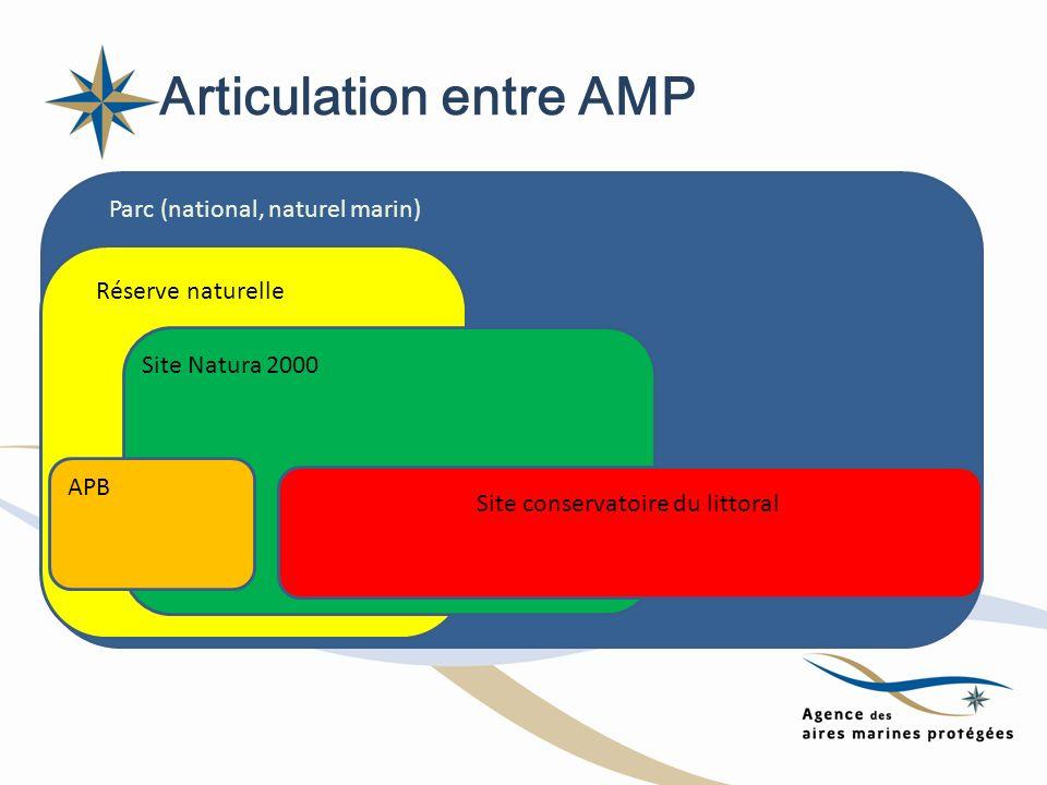 Articulation entre AMP Parc (national, naturel marin) Réserve naturelle Site Natura 2000 APB Site conservatoire du littoral