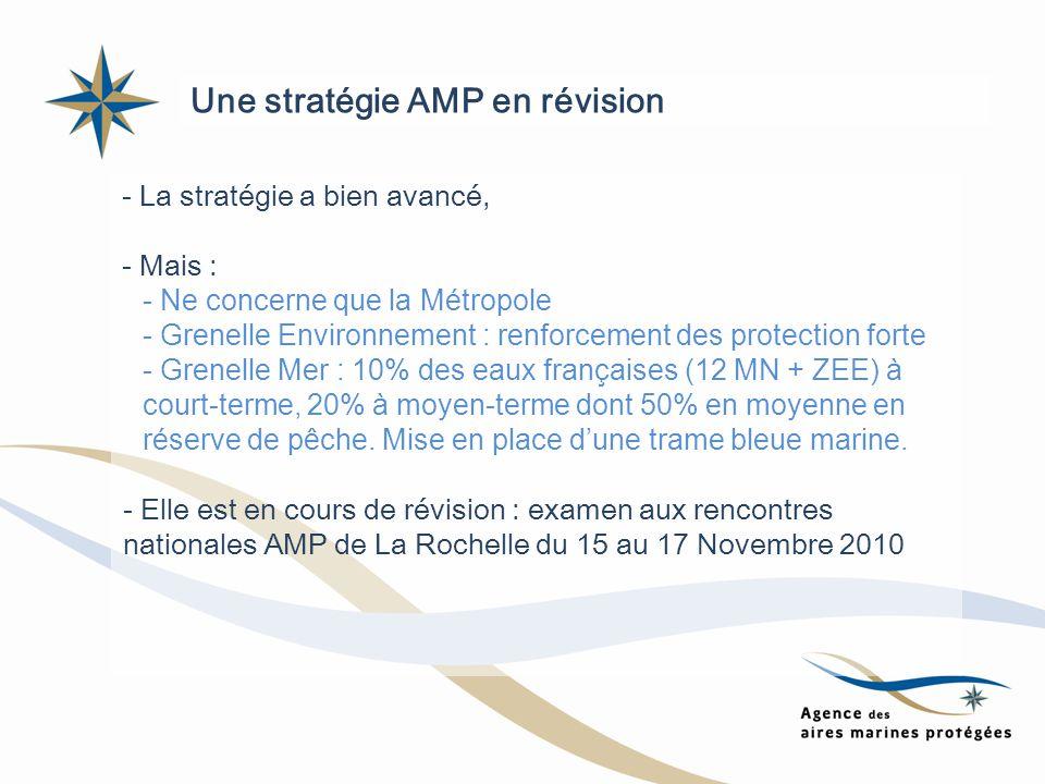 - La stratégie a bien avancé, - Mais : - Ne concerne que la Métropole - Grenelle Environnement : renforcement des protection forte - Grenelle Mer : 10