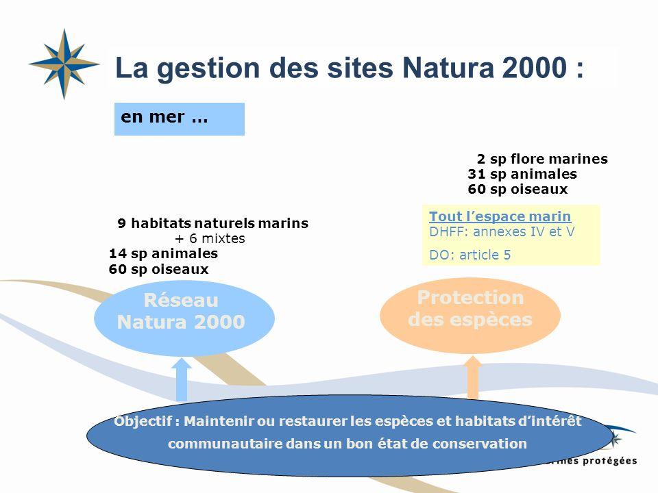 en mer … Réseau Natura 2000 Protection des espèces Tout lespace marin DHFF: annexes IV et V DO: article 5 2 sp flore marines 31 sp animales 60 sp oise