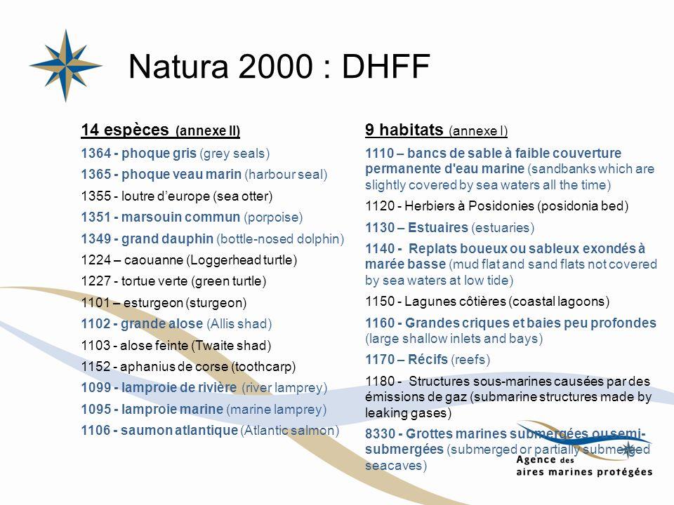 Natura 2000 : DHFF 9 habitats (annexe I) 1110 – bancs de sable à faible couverture permanente d'eau marine (sandbanks which are slightly covered by se