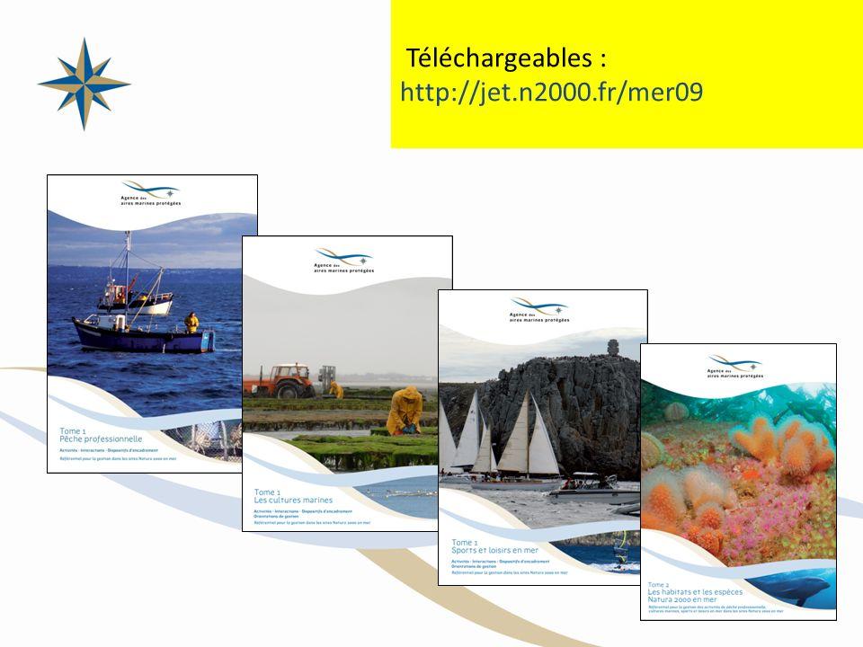 Téléchargeables : http://jet.n2000.fr/mer09