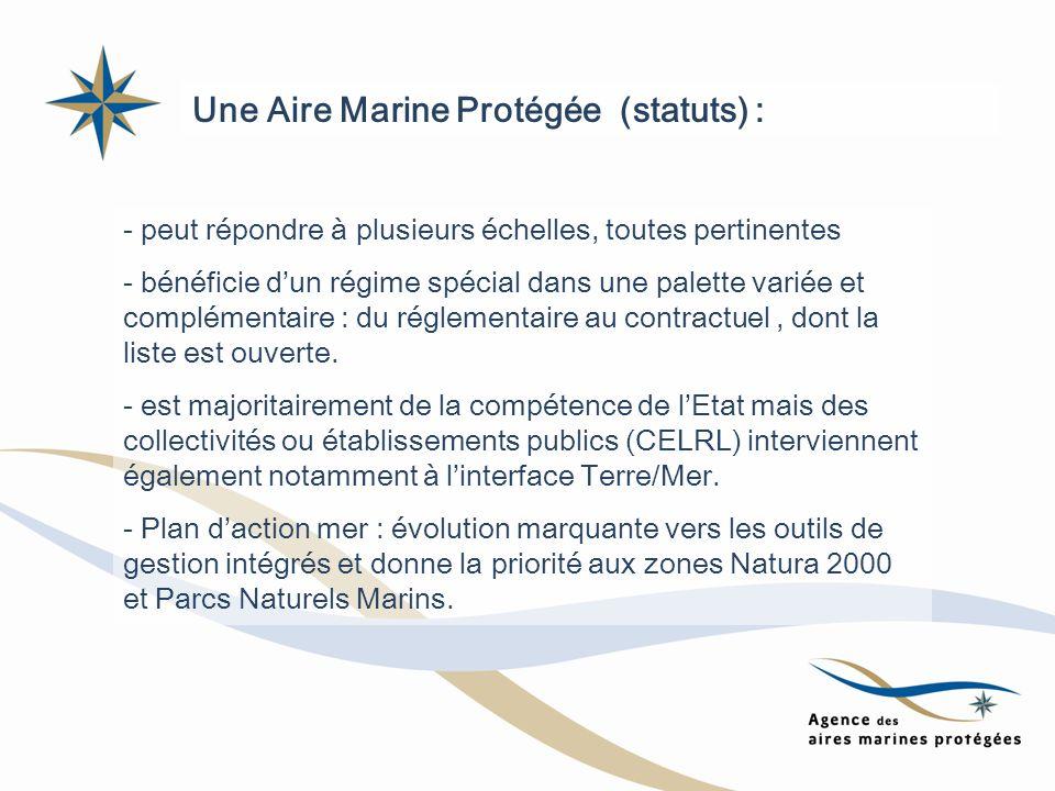 Une Aire Marine Protégée (statuts) : - peut répondre à plusieurs échelles, toutes pertinentes - bénéficie dun régime spécial dans une palette variée e