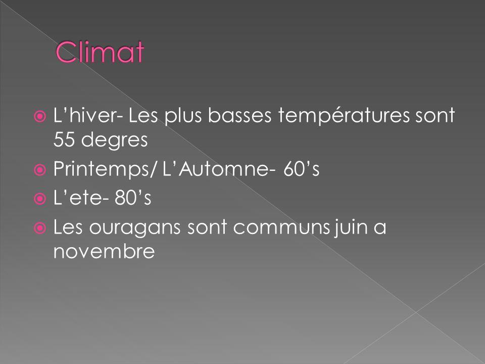 Lhiver- Les plus basses températures sont 55 degres Printemps/ LAutomne- 60s Lete- 80s Les ouragans sont communs juin a novembre