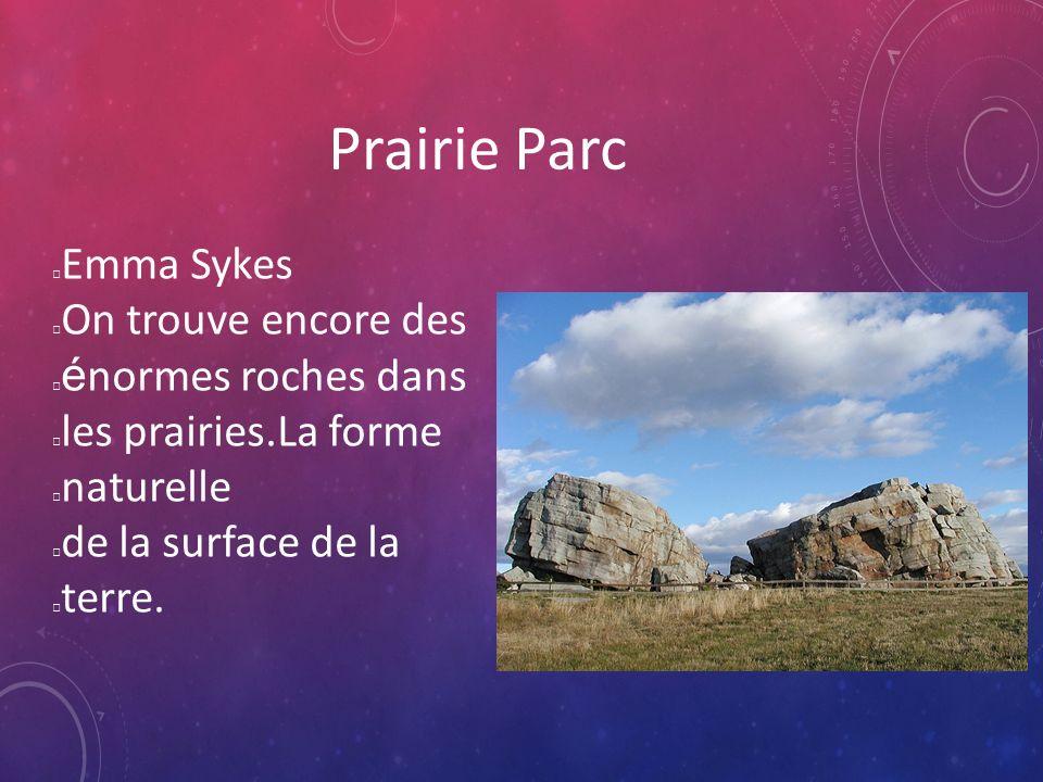 Prairie Parc Emma Sykes On trouve encore des é normes roches dans les prairies.La forme naturelle de la surface de la terre.