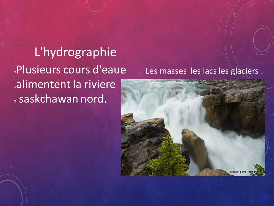 L hydrographie Plusieurs cours d eaue alimentent la riviere saskchawan nord.