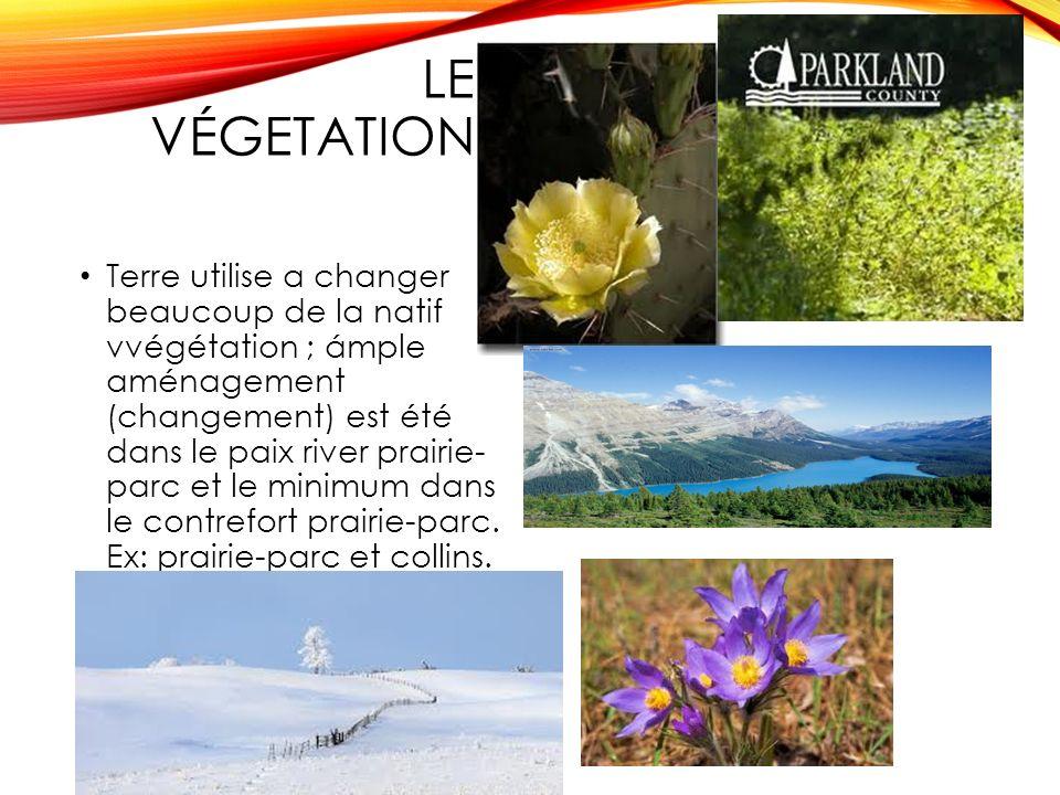 LE VÉGETATION Terre utilise a changer beaucoup de la natif vvégétation ; ámple aménagement (changement) est été dans le paix river prairie- parc et le minimum dans le contrefort prairie-parc.