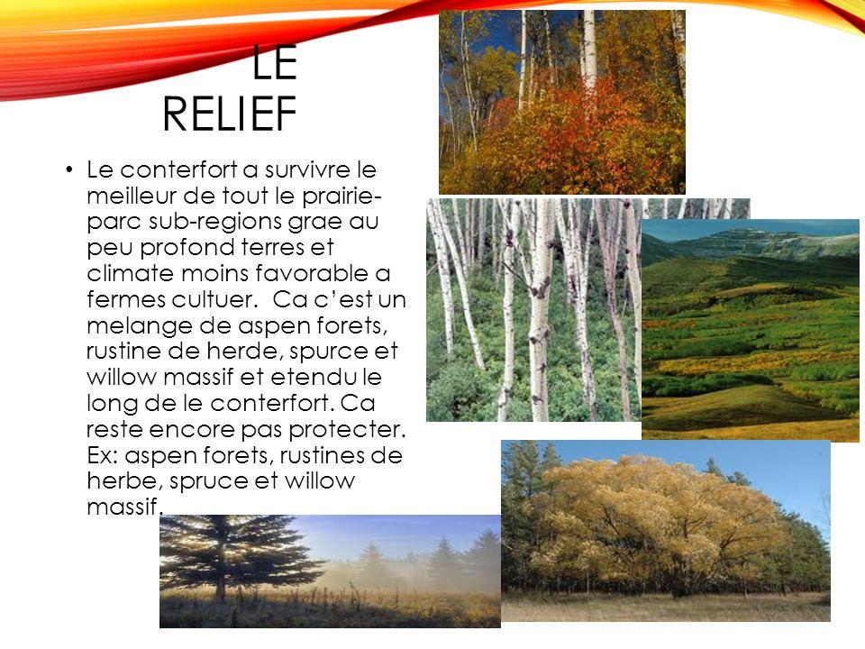 LE RELIEF Le conterfort a survivre le meilleur de tout le prairie- parc sub-regions grae au peu profond terres et climate moins favorable a fermes cultuer.