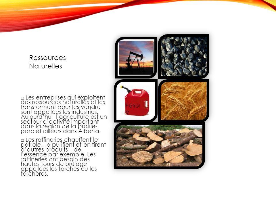 Les entreprises qui exploitent des ressources naturelles et les transforment pour les vendre sont appellées les industries.