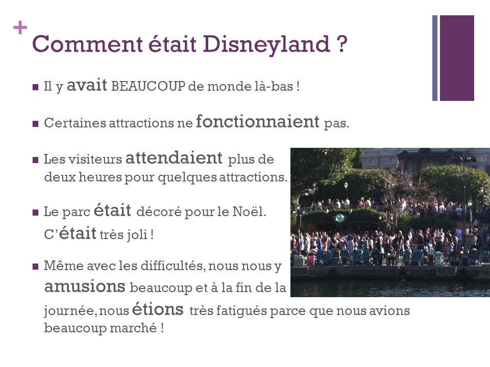 + Comment était Disneyland ? Il y avait BEAUCOUP de monde là-bas ! Certaines attractions ne fonctionnaient pas. Les visiteurs attendaient plus de deux